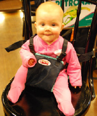 My Baby's Own Deluxe Travel Chair - Click here to view in our store